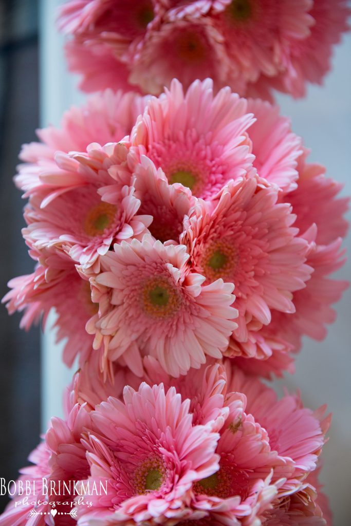 Tybee-Island-Wedding-Photography-Great-Expectations-Ky-Bobbi-Brinkman-Photography--42017